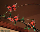 Butterflies on the light-decorated indoor trees