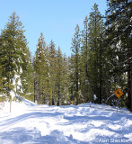 It may now be paved, but The Skyway still goes unplowed between Inskip and Butte Meadows