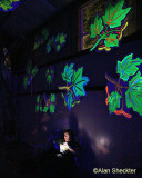 Donna reads by flashlight under blue light leaves, waiting for Brokedown in Bakersfield's late-night set
