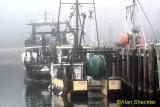 Foggy Noyo Harbor