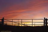 Sunset Gate.jpg