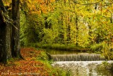 Water-Fall.jpg