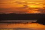 Dawn On The River.jpg
