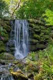 Falls at Rainbow Springs 2