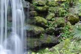 Falls at Rainbow Springs 3