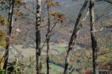Rich Mountain Trail 4