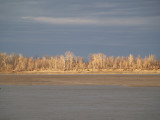 Mississippi River - 1-1-2011 at Tiptonville Landing, Lake Co, TN.