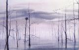 JRW - Dawn - Reelfoot Lake - Osprey Nest -
