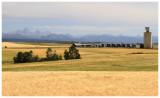 Tetons and an Idaho Grain Elevator