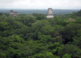 Tikal, from top of Temple IV 1227