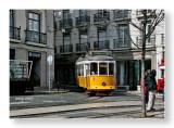 the Lisbon yellow