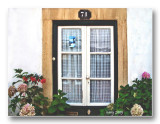 Window on door n� 71