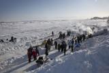 Iditarod 2012 - Unalakleet