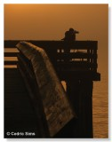 Pbase Photographer Don Taylor shooting from the pier