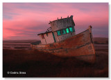 Point Reyes Boat (Inverness, Ca.)