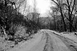 RR4-Landscape-Mantua 087 AC.jpg