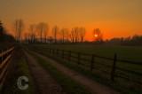 Hele Sunset