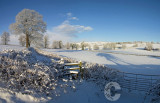 Snow at Hele Payne Farm