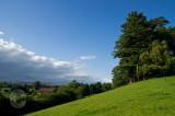 Devon view