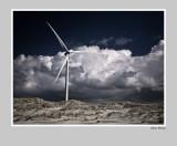 Neeltje-Jans  windturbine