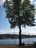 View from Riddarholmen