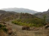 La Vilella Alta