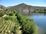 Muelle fluvial de Vega Terrón