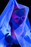 272 Black Light Veil 2.jpg