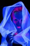 272 Black Light Veil 3.jpg