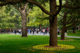 Chinese group at morning exercises under trees in Zizhuyuan Purple Bamboo Park in Beijing on National holiday