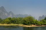 Water Buffalo grazing on Li River Guangxi province China with karst limestone peaks