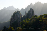 Back lit pines on Camel Back Peaks from Refreshing Terrace North Sea Huangshan Mountain China