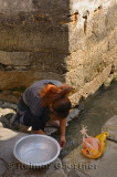 Woman washing a chicken in the Jiyin waterway in the streets of Hongcun village China