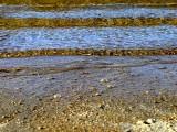 Lake Waves ~ September 15th