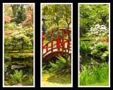Japanese+garden.jpg