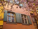 le printemps est arrivé à Colmar!