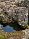 la plaque tectonique
