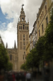 La Giralda,  Cathedral of Sevilla