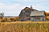 Fall  Barn and  Shed Crystal Hill SK.