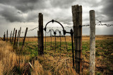 Fall  The Gate Dunkirk Sk.