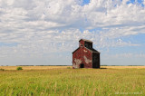 On a Private Farm North of Antler SK. Aug 2009