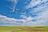 Late Spring On The Prairies