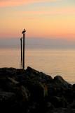 Anna Marie Island