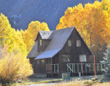 Striking setting for cabin surrounded by yellow leaves!