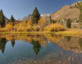 Quiet reflection in small lake in Bishop Creek Canyon