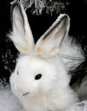 A cute stuffed bunny makes the scene!