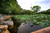 Yuyuantan Park.The CCTV Tower