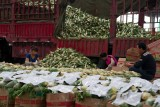 SHOUGUANG.The Vegetable Hall the biggest of China
