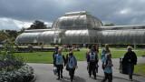 Kew Gardens and herbarium 2011