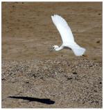 Nahariya_8-11-2006 (27).jpg